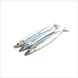 5.  Super Frozen Sanma Maru Whole | Item Number: 71272 | Package: 12/1.76lbs (5pcs) | Origin: Iwate, Japan