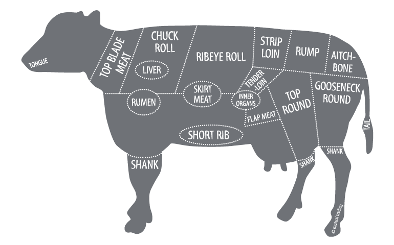 beef butcher diagram Beef Knuckle Diagram