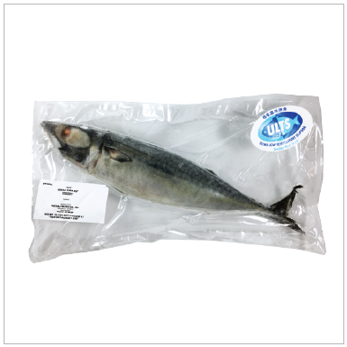 SUPER FROZEN KINA SABA IQF | Item Number: 74091 | Package: 20/21.1oz (600g) | Origin: Miyagi, Japan