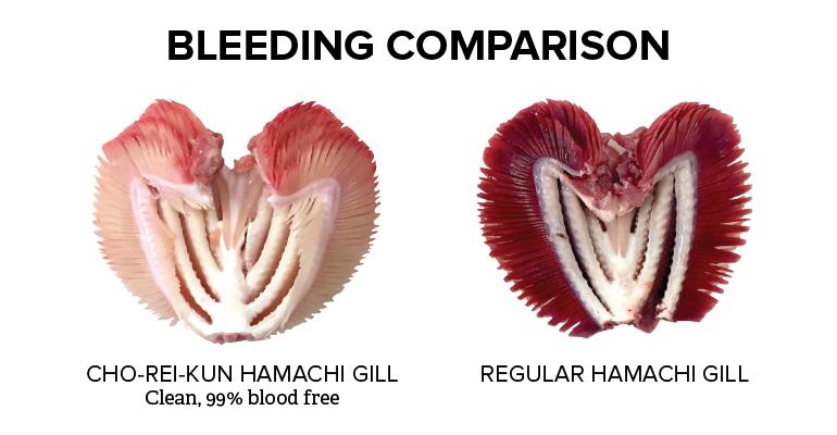 Bleeding-Comparison